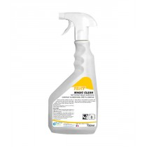 TERY Magic Clean pomme - 750 ml
